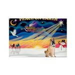 XmasSunrise/Shar Pei 5 Rectangle Magnet (10 pack)