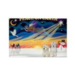 XmasSunrise/2 Cotons Rectangle Magnet (10 pack)