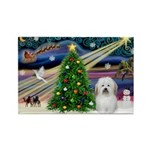 XmasMagic/ Coton Rectangle Magnet (10 pack)