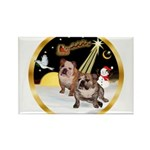 Night Flight/2 Eng Bulldogs Rectangle Magnet (10 p