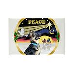 XmasDove/ German Shepherd Rectangle Magnet