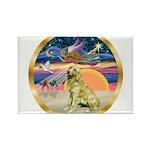 XmasStar/Golden #1 Rectangle Magnet (10 pack)
