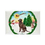 Take Off1/Lab (choc) Rectangle Magnet (10 pack)
