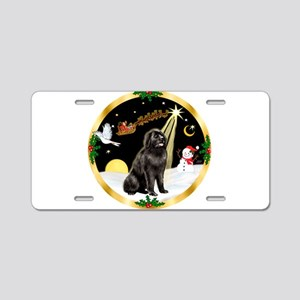 Night Flight/Newfie #2 Aluminum License Plate