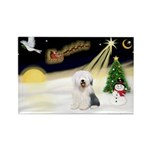 Night Flight/OES #2 Rectangle Magnet (10 pack)