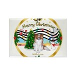 XmasMusic1MCL/Papillon Rectangle Magnet (10 pack)
