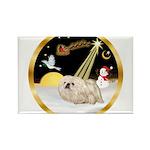 Night Flight/Pekingese Rectangle Magnet (10 pack)