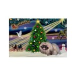 XmasMagic/ Pekingese Rectangle Magnet