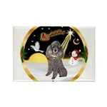 Night Flight/Silver Poodle Rectangle Magnet (10 pa
