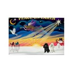 XmasSunrise/2 Poodles Rectangle Magnet