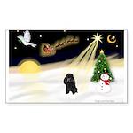 Night Flight/Poodle (min) Sticker (Rectangle 10 pk