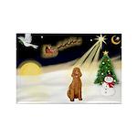Night Flight/Std Poodle (blk) Rectangle Magnet