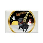 Night Flight/Pug (black) Rectangle Magnet