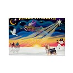 XmasSunrise/ Silky T Rectangle Magnet (10 pack)