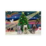 Xmas Magic & Skye Trio Rectangle Magnet (10 pack)