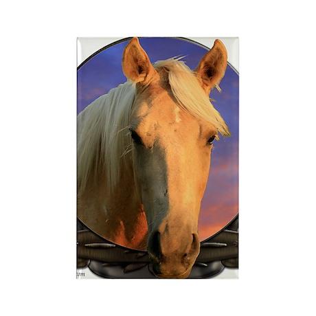Palomino horse Rectangle Magnet