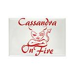 Cassandra On Fire Rectangle Magnet
