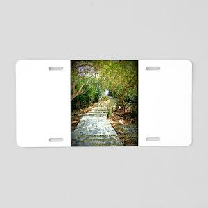 Direct Access Aluminum License Plate