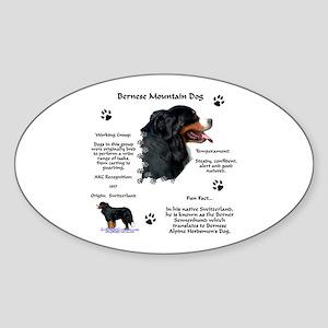 Berner 1 Oval Sticker