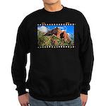 Boynton Canyon Trail 35mm Sweatshirt (dark)