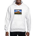 Boynton Canyon Trail 35mm Hooded Sweatshirt