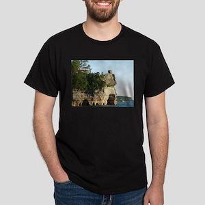 Pictured Rocks C Dark T-Shirt