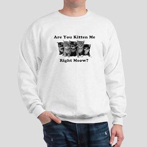Light Kitten Me Right Meow Sweatshirt
