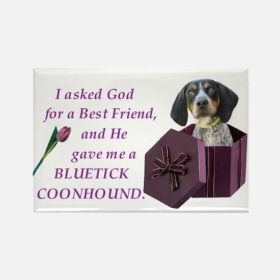 Bluetick Coonhound Rectangle Magnet