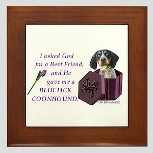 Bluetick Coonhound Framed Tile