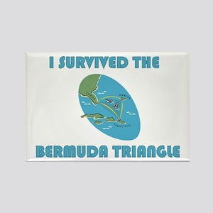Bermuda Triangle Magnets