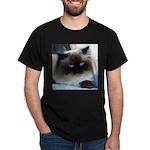 Blue-Eyed Himalayan Cat Black T-Shirt