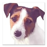 Jack Russell Terrier Square Car Magnet 3