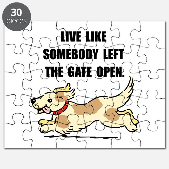 Dog Gate Open Puzzle