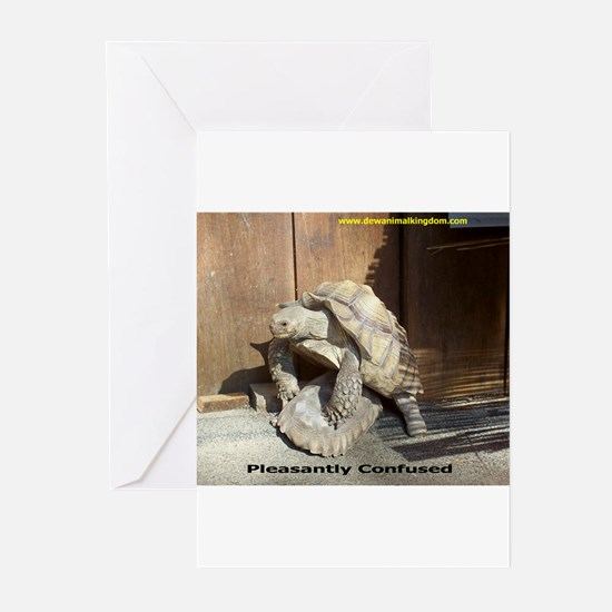 Pleasantly Confused Greeting Cards (Pk of 10)