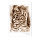 """""""Cat Drawing"""" Postcards (Package of 8)"""