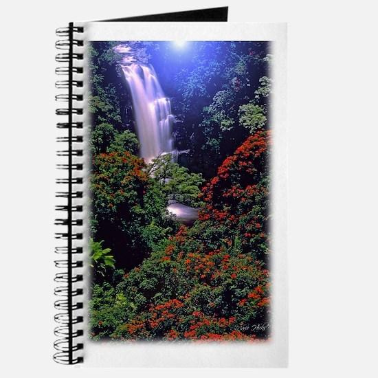Moonlight Falls Journal
