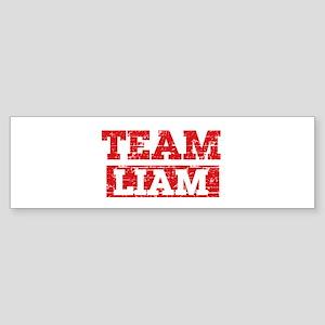 Team Liam Sticker (Bumper)