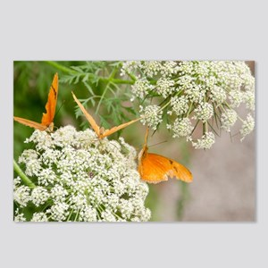 Nature's Elegance Postcards (Package of 8)