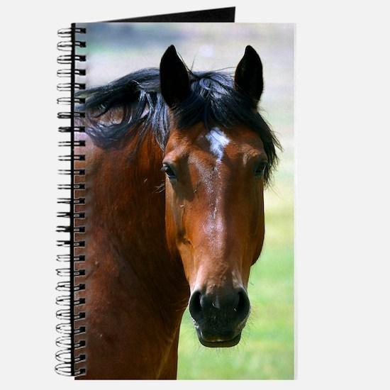 Horse portrait 2 Journal
