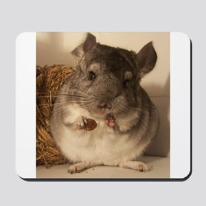 Lovely chinchillas Mousepad