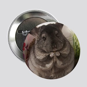"Chinchilla raisins 2.25"" Button"