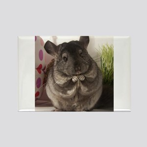 lovely chinchilla Rectangle Magnet