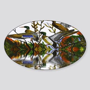 Duck Flight Reflection Sticker (Oval)