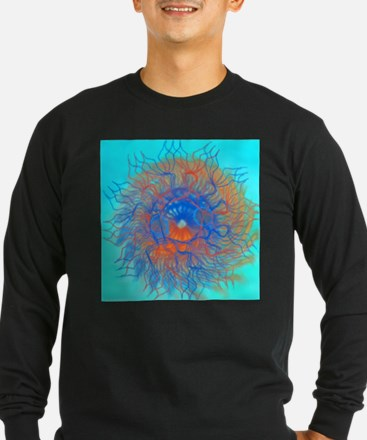Star Mitosis T