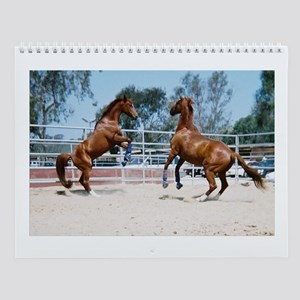 Horse Play Wall Calendar