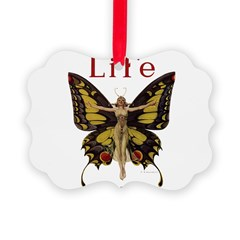 Leyendecker Butterfly_1010.jpg Ornament