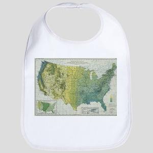 Vintage United States Precipitation Map ( Baby Bib
