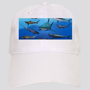 Shark Gathering Cap