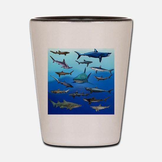 Shark Gathering Shot Glass