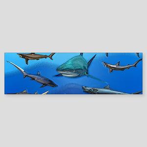 Shark Gathering Sticker (Bumper)